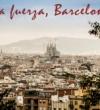 El CGE condena el atentado de Barcelona y agradece la encomiable labor de los sanitarios en estos duros momentos