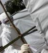 120 trabajadores sanitarios han muerto ya por el brote de ébola, según la OMS