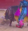 El CGE solicita la apertura de expediente disciplinario a una enfermera de Madrid que vertió comentarios atroces tras la muerte del torero Víctor Barrio